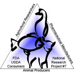 Introduction animal abuse research paper